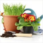 Γλάστρες, έπιπλα κήπου, τραπέζια, καρέκλες είδη διακόσμησης κήπου... title=Κήπος/Βεράντα